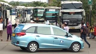 Kepadatan bis sinar jaya di terminal terpadu Pulogebang.