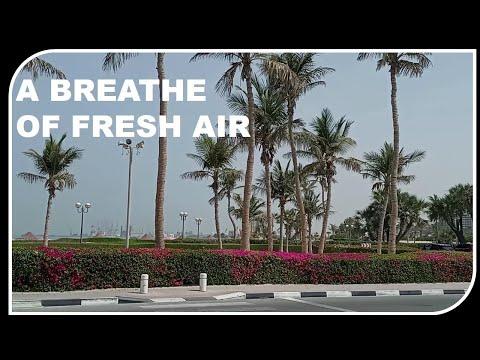S45_A BREATHE OF FRESH AIR || AL MAMZAR BEACH PARK DUBAI || FAMILY DAY OUT