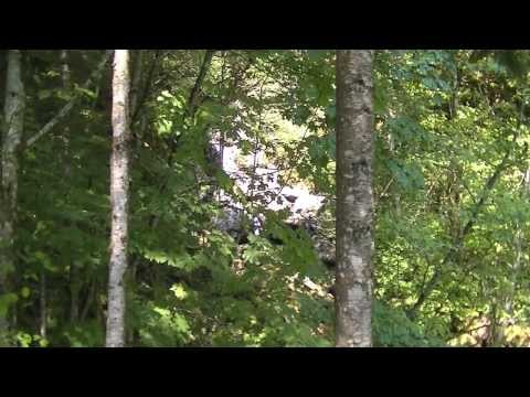 whisper-adventure:-columbia-river-gorge