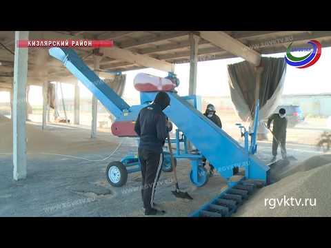 В этом году в Кизлярском районе откроется рисоперерабатывающий завод