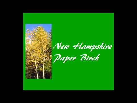 50 US State Trees Slideshow (with MUSIC!)