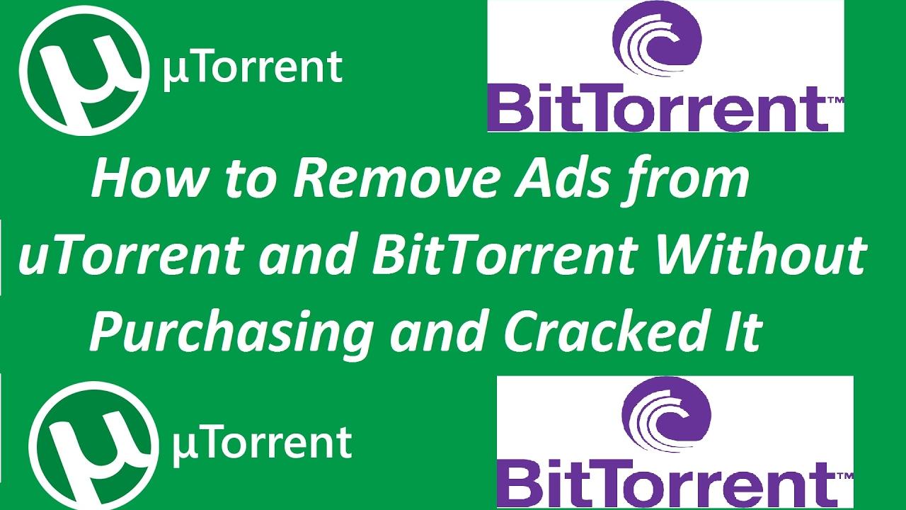 bit torrent cracked