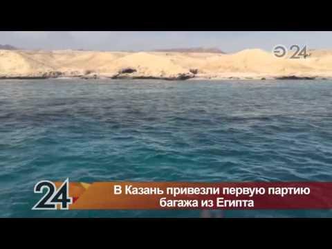 Багаж туристов из Египта отправляют в Москву в аэропорт «Внуково»