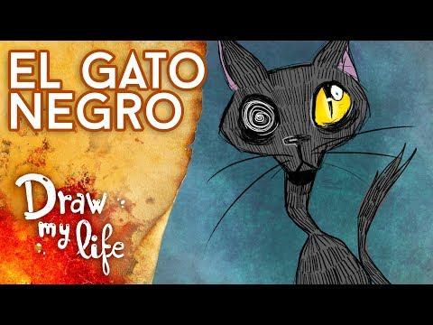 La FUNESTA historia de EL GATO NEGRO - Draw My Life