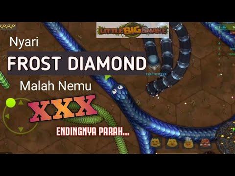 Download Nyari Frost Diamond Malah Ketemu Xxx Little Big Snake In Mp4 And 3gp Codedwap