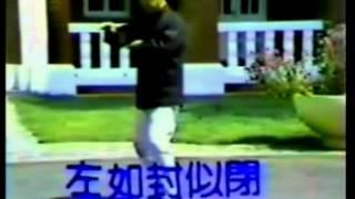 王延年楊家秘拳127式第二段 19~26)