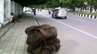 Jalan El Tari Kupang City Ini Dikerjakan Pertama Kali Oleh Johanis  A. W. Toelle & Team. Bersejarah!