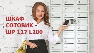 Обзор шкафа СОТОВИК-ШР 117 L200