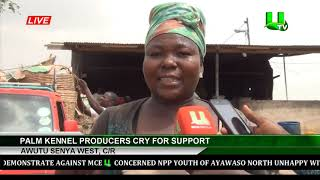 Awutu Senya West, C/R : Palm Kennel Producers Cry For Support