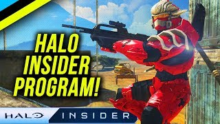 HALO INSIDER PROGRAM Explained - HALO MCC PC Early Access & More!