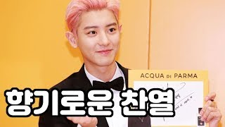 [S영상] 엑소(EXO) 찬열, '향수를 닮은 향기로운 남자'