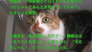 このビデオの情報SMAP中居、キスマイ二階堂高嗣&ヒロミと旅行に驚きの声.