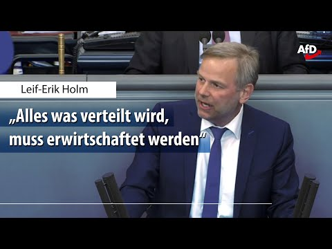 Leif-Erik Holm zur Wirtschaftspolitik der Bundesregierung