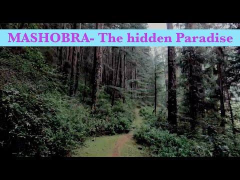 ZostelX Kotkhai | Shimla | A Hilltop RetroscapeKaynak: YouTube · Süre: 52 saniye