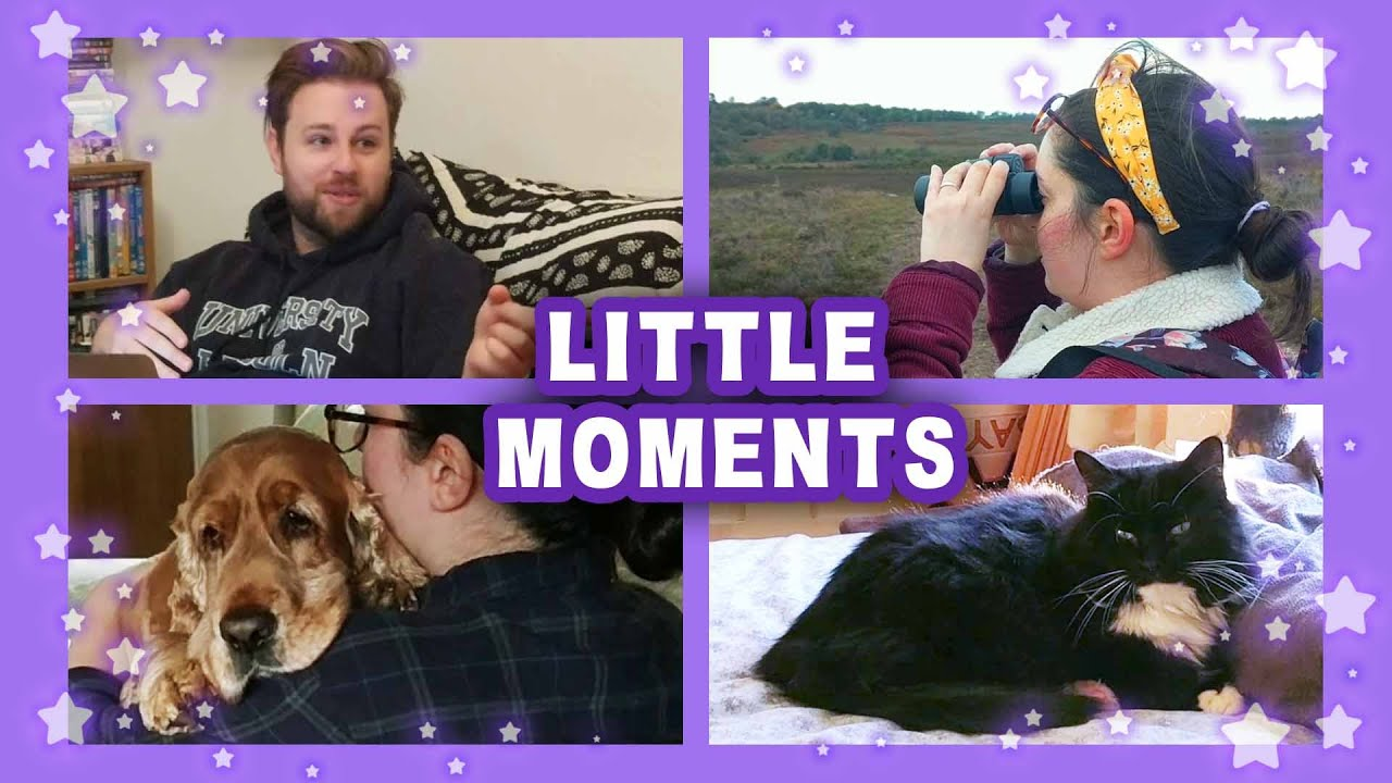 Little Moments | October 2020