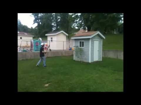 How To Get Rid Of Wasps Nest With Baseball Bat