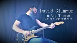 David Gilmour - In Any Tongue - Instrumental Guitar Cover