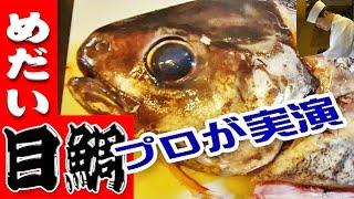 目鯛(メダイ)のさばき方【刺身・バター焼・かま煮付け】三枚おろし(Japanese butterfish)