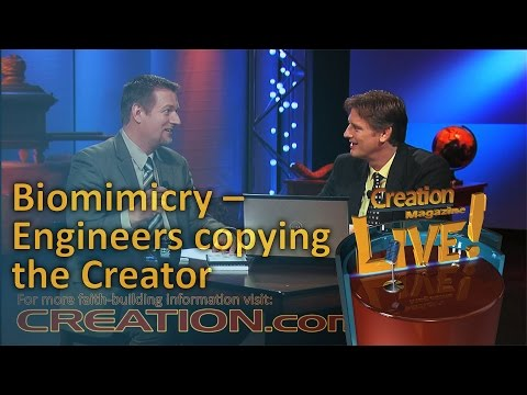 Biomimetics – engineers copying the Creator (Creation Magazine LIVE! 4-01)