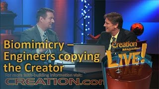 Biomimetics – engineers copying the Creator (Creation Magazine LIVE! 4-01) by CMIcreationstation