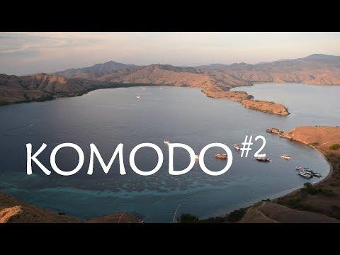 Meet The Komodo Dragon   Vlog 003