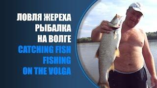 ловля рыбы на тьюбы