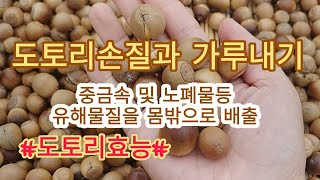 [도토리가루만들기] 도토리손질 및 가루만들기
