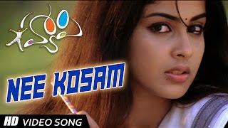 Nee kosam Full Video Song || Happy Telugu Video Songs|| Allu Arjun, Genelia