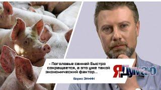 Борис Зимин о свиной африканской чуме ЯтакДУМАЮ Сеня Кайнов Seny Kaynov SENYKAY