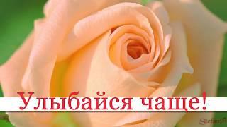 Для тебя удачного дня и хорошего настроения