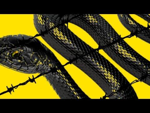 Post Malone - rockstar (Megamix) ft. Lil Wayne, 21 Savage, Galaxy Goats, Jadakiss, T-Pain...