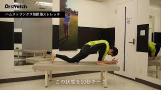 姿勢を良くする|ハムストリング・股関節ストレッチ|ドクターストレッチ