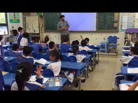 Teaching at a Public School in Shenzhen
