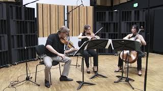 Beethoven String Trio op 9 No 1