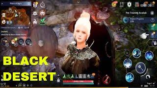 Black Desert online game play