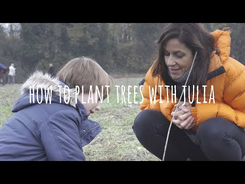Julia Bradbury tree planting with Premier Paper Group and the Woodland Trust - fun length