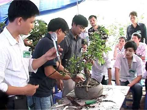 Hướng dẫn kỹ thuật phần 1 - Caycanhvietnam.com off vườn Tràng An 2011