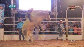 Rodeio de Barbosa 2017 - MELHORES MONTARIAS / SEMI FINAL