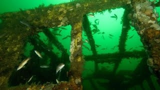 Scraps from old Tappan Zee Bridge used for artificial reef