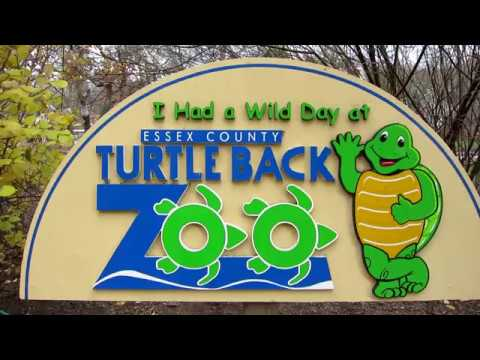 Turtle Back Zoo - West Orange, NJ (Animals)