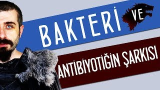 bakteri-ve-antibiyotiin-arks