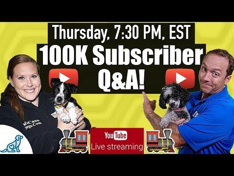 Dog Training Tips - 100K Q&A - Professional Dog Training Tips