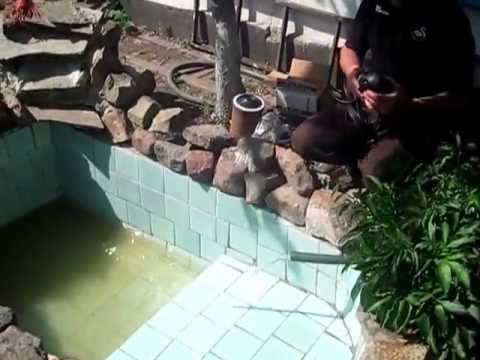 бассейн в домашних условиях