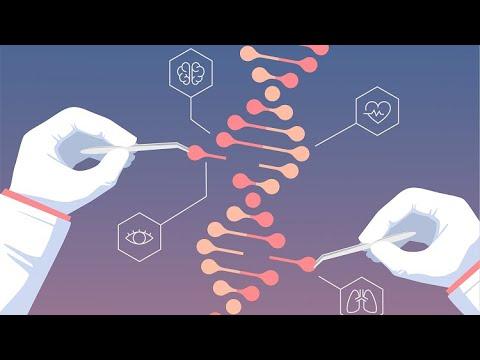 Gene Knockout using CRISPR, a Video Tutorial