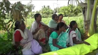 Azolla Mother Pit Preparation _ Chittoor _ SERP -CMSA & Digita…