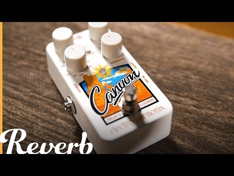 Electro-Harmonix Canyon Delay Looper | Reverb Demo Video