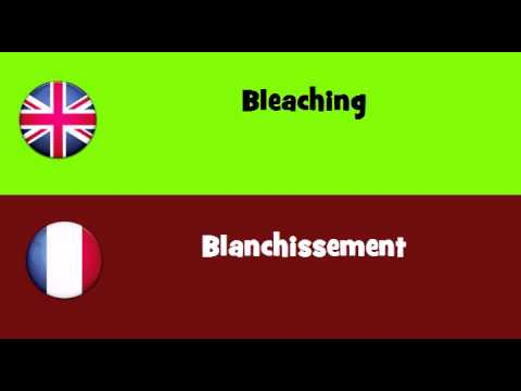 FROM ENGLISH TO FRENCH = Bleaching