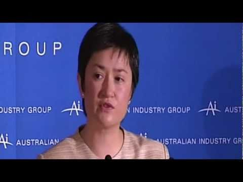 Senator Wong says carbon price can drive industries offshore