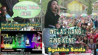 Gambar cover syahiba saufa WELAS HANG RING KENE bareng Bandoel musik live in Paspan Banyuwangi