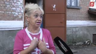 У Бердичеві труять собак і розкидають отруту по під'їздах - Житомир.info